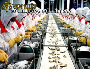 Xin cấp GP VSATTP cơ sở đủ điều kiện sơ chế đóng gói Thủy sản và sản phẩm thủy sản,