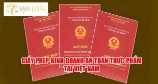 Giấy Phép Kinh Doanh an toàn thực phẩm tại Việt Nam