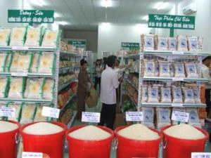 Xin giấy phép an toàn thực phẩm cửa hàng lương thực