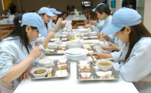 Tư vấn vệ sinh an toàn thực phẩm bếp ăn tập thể